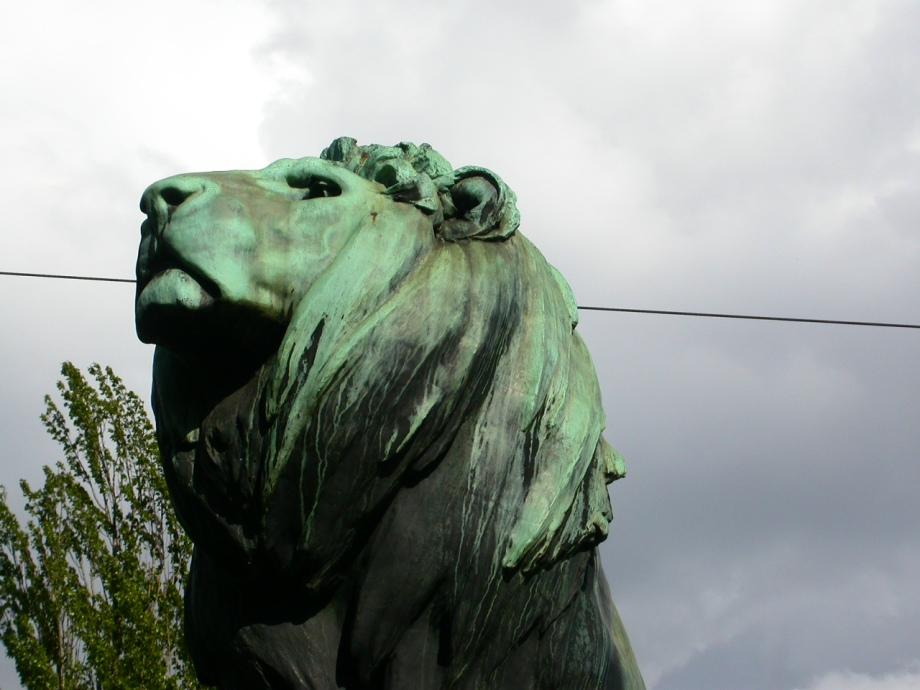 Noble Lion Front